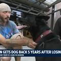 St. Louis Dog's Custody Battle Has Surprisingly Heartwarming Ending