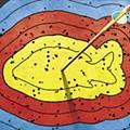 An Arrow Runs Through It: Bowfishers take aim at Asian carp