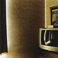 Featured Review: American Interiors: Photographs by David R. Hanlon