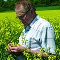 Percy Schmeiser: David Versus Monsanto