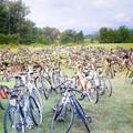 Bike Rights