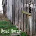 Homespun: Junebug