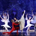 Reverent or Redundant? 6 Different Ways to See the Nutcracker Ballet in St. Louis