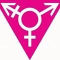 Survey Seeks Input from Trans Folks in Missouri