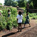 At Camp Kumquat, City Kids Learn About Crops, Sustainability and Weeds