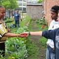 "Guess Who's Tackling ""Food Deserts"" in Chicago? Your Favorite Local (Evil?) Agri-Giant"