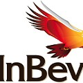 Researcher: InBev Pushes Anti-Booze Program That's Destined to Fail
