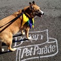 Photos: Dogs Of The Annual Beggin' Pet Parade March In Soulard