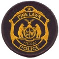 Rickey Collins: Pine Lawn Police Chief Investigated Over Shooting