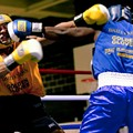 Fight Nights! Golden Gloves Boxing Hits the South Broadway Athletic Club This Weekend