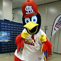 "Jon Stewart ""Leaks"" St. Louis Cardinals Mascot Fredbird's Sex Tape [VIDEO]"