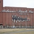 Sunday Times: Go to St. Louis to Drink Budweiser
