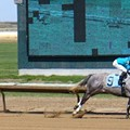 Windfall for Fairmount Park; Weathered Horse Track To Get Estimated $14 Million