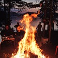 Campin' this Weekend? Don't Move Firewood!!!