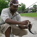 Who's Snaggin' Catfish within City Limits?