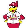 Cardinals to Particpate in Strange Pitch to Save Earth ... For an Hour