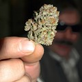 Weed, the Knockout Game and Penis Jokes: The 13 Most-Read Daily RFT Stories of 2013