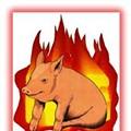 4,858 Pigs Die in Blaze at Premium Standard Farms in Northern Missouri