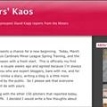 David Kopp, Blogging Sensation?
