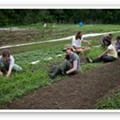 EarthDance Farms: A Model of Sustainability in Ferguson [PHOTOS]