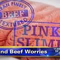 """""""Pink Slime"""" Manufacturer Sues ABC News, Probably Because of Headlines Like This One"""