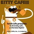 Kitty Cafe Pop-Up Pairs Felines With Coffee Lovers