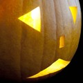 St. Louis Area and Northeast U.S. Face Pumpkin Shortages