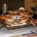 Back from Baltimore, Full of Crab