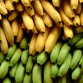 A National Banana Tour is Coming to St. Louis