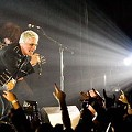Photographer's My Chemical Romance Nightmare Has Happy Ending