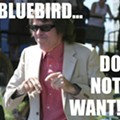 Post-Rockist.com Covers Beatle Bob vs. the Bluebird Boycott