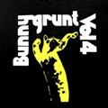 Bunnygrunt's New LP, <i>Vol. 4</i>: Homespun Review