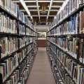 SIUE Aims to Set a World Record — and Benefit Kids — With Books