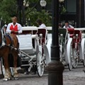 Horses Would Be Banned from St. Louis Streets Under New Proposal