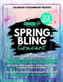 1e3b5619_copy_of_spring_party_flyer_1_.jpg