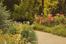 3ff808fd_garden_path_small_email.jpg