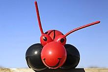 JENNIFER SILVERBERG - A ladybug by Thad James