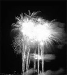 Picture this, but in color. And with sound. And mosquitoes.