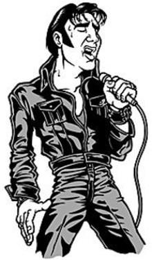 MARK  POUTENIS - Is it Elvis or is it Steve Davis? With Davis, it's hard to - tell.
