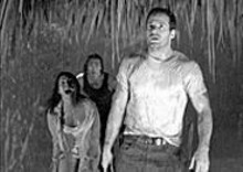 (left to right) Salli Richardson-Whitfield, Karl Yune and - Johnny Messner are surprised to find snakes in - Borneo.