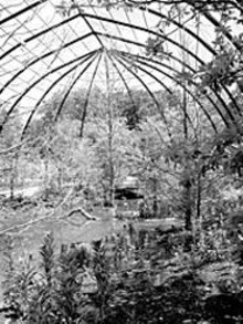 COURTESY OF THE SAINT LOUIS ZOO - Picture the glory of the 1904 Flight Cage without the - showy lighting of the sun, but with the twinkling lights - of man.