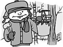 MARK  POUTENIS - Hey, you little sapsuckers! It's maple syrup time!