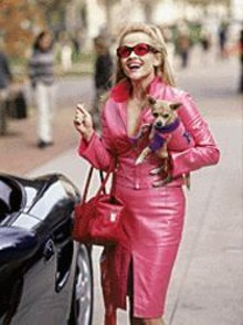 Reese Witherspoon goes to Harvard in Legally Blonde.