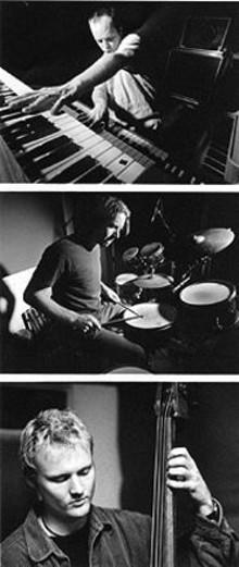 JIMMY  KATZ - Medeski, Martin and Wood