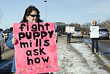 JENNIFER SILVERBERG - Janet Banks organizes weekly protests outside of Chesterfield Mall.