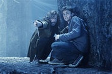 Harry Potter (Daniel Radcliffe) shines in the darkest installment of the series' five films.