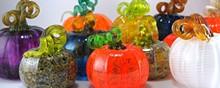 b86a2c00_september_-_pumpkins.jpg