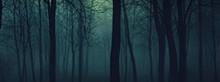evil_forest.jpg