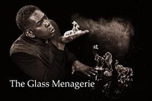 d3d538a8_glass_menagerie_by_prophotostl.jpg
