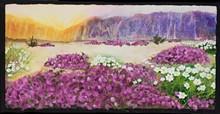 1e8f1541_mmartin-desert_bloom_1920_-_copy.jpeg